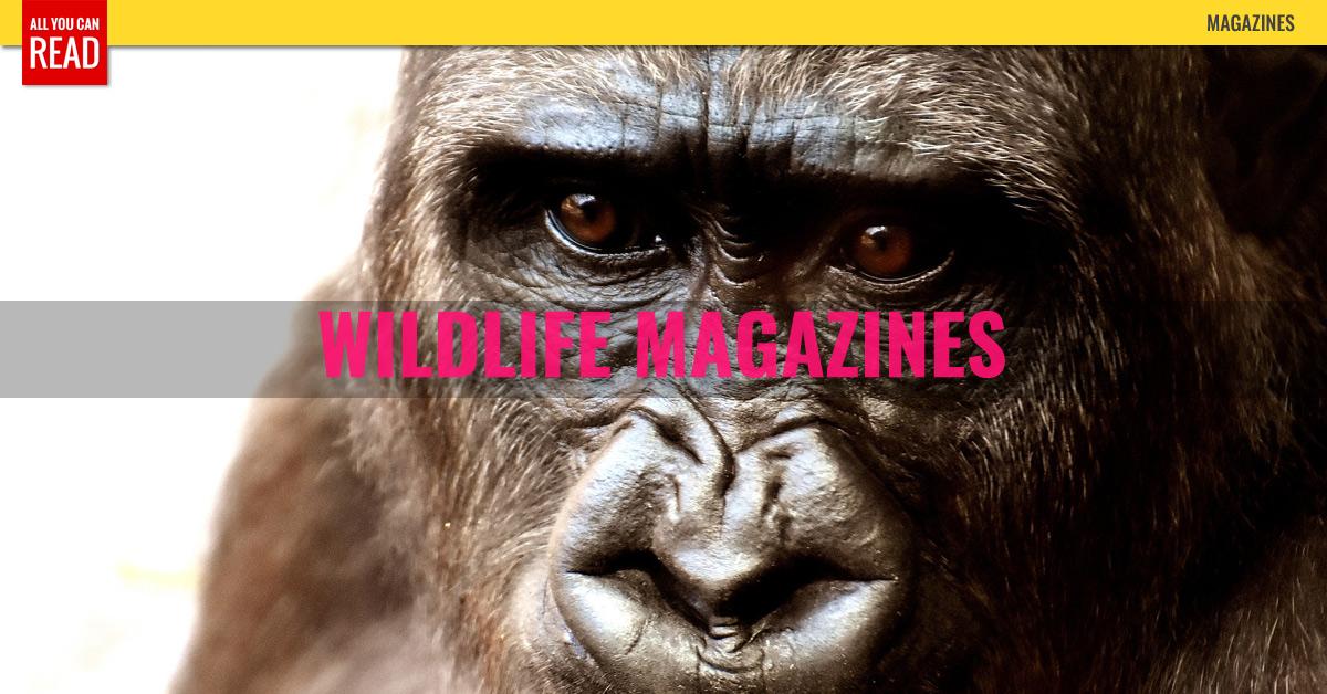 Best Wildlife Magazines For Kids