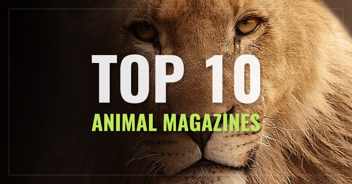 Top 10 Animal Magazines
