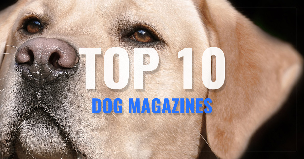 Top 10 Dog Magazines