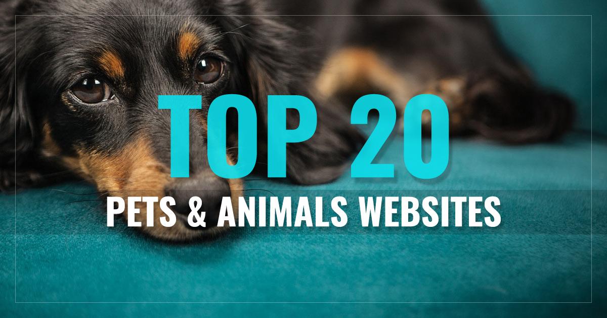 Top 20 Pets & Animals Websites