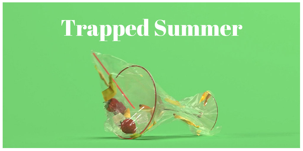 Trapped Summer - Peter Tomaszewicz