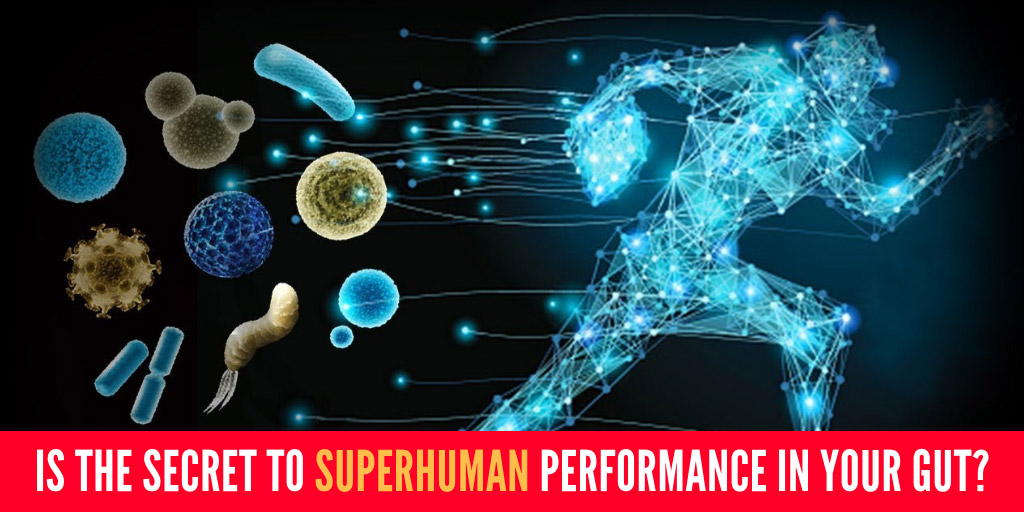 Is the Secret to Superhuman Performance in Your Gut? - Seeker