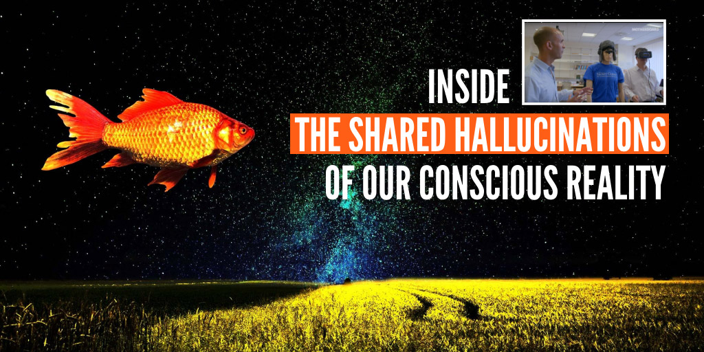 Inside The Shared Hallucinations of Our Conscious Reality - Motherboard
