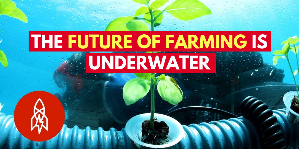 The Future of Farming Is Underwater