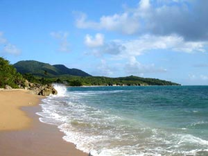 Puerto Rico Newspapers News Media San Juan Allyoucanread More About Esperanza Beach